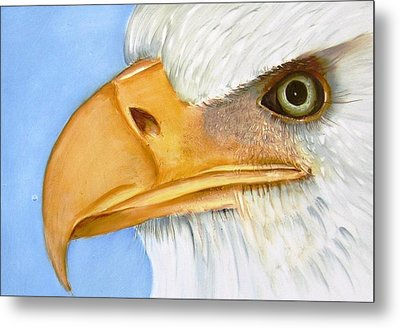 Image 1147b Bold Eagle 1 Metal Print by Wilma Manhardt