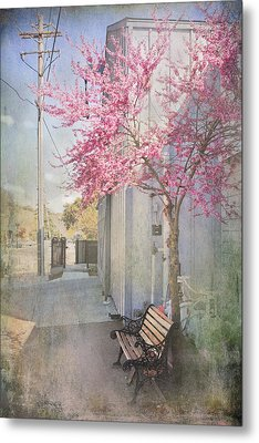 In A Small Town Metal Print by Laurie Search
