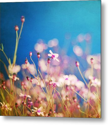Infatuation In Blue  Metal Print by Amy Tyler