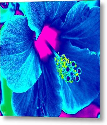 Intimate Blue Metal Print by Keren Shiker