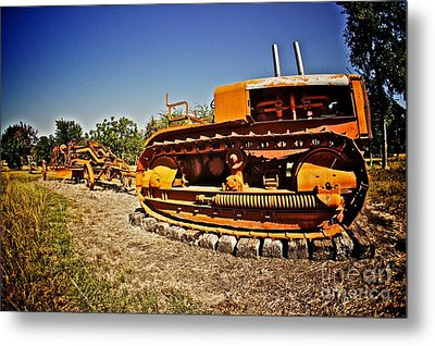 Into The Farm Metal Print by Will Cardoso