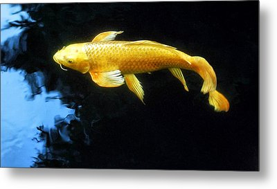 Into The Light Metal Print by Don Mann