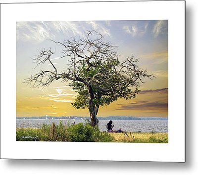 Introspective Metal Print by Brian Wallace