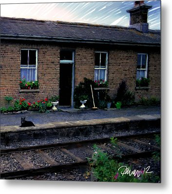 Ireland Series - Crossing Station Dog Metal Print by Jim Pavelle