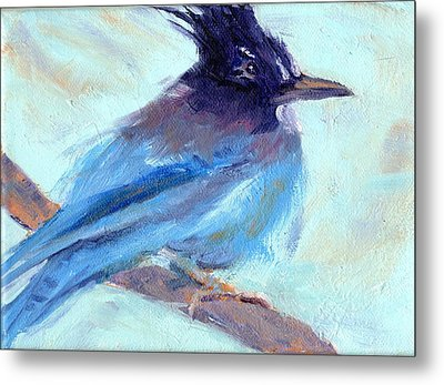 Jay To The Right Metal Print by Cheryl Whitehall