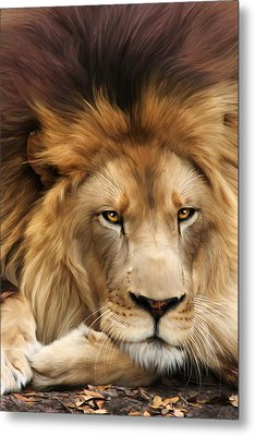 Joseph Metal Print by Big Cat Rescue
