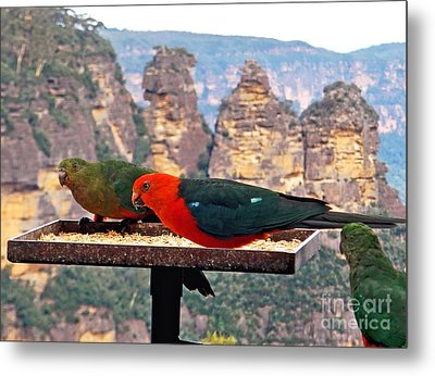 King Parrots And The Three Sisters Metal Print by Kaye Menner
