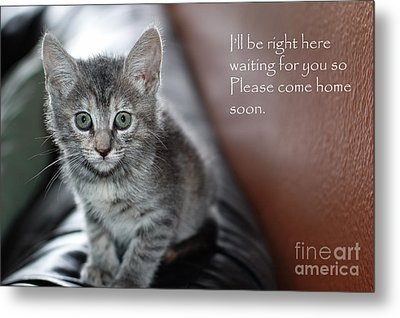 Kitten Greeting Card Metal Print by Micah May