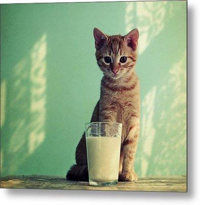 Kitten With Glass Of Milk Metal Print by By Julie Mcinnes