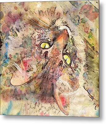 Kitty Fluffs Metal Print by Marilyn Sholin