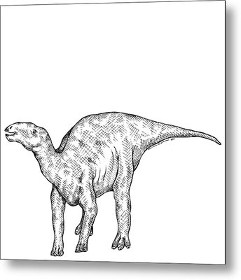 Kritosaurus - Dinosaur Metal Print by Karl Addison