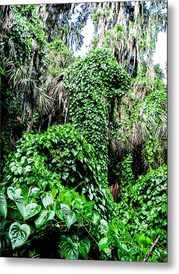 Kudzu Creature Metal Print by Christy Usilton
