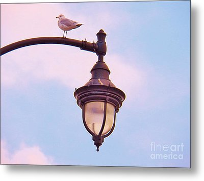 Lampost Gull   Two Metal Print by Judy Via-Wolff