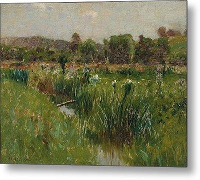 Landscape With Wild Irises Metal Print by Bruce Crane