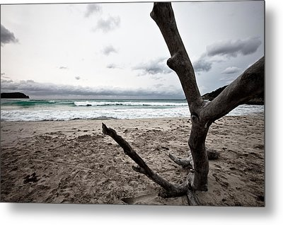 Large Piece Of Driftwood On A Beach On An Overcast Day Metal Print by Anya Brewley schultheiss