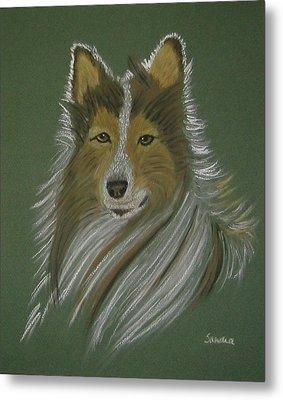 Lassie Metal Print by Sandra Frosst