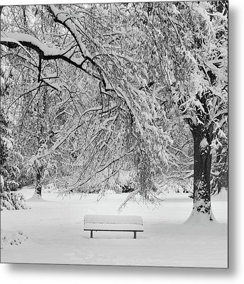 Last Break Metal Print by Philippe Sainte-Laudy Photography