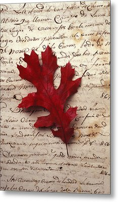 Leaf On Letter Metal Print by Garry Gay