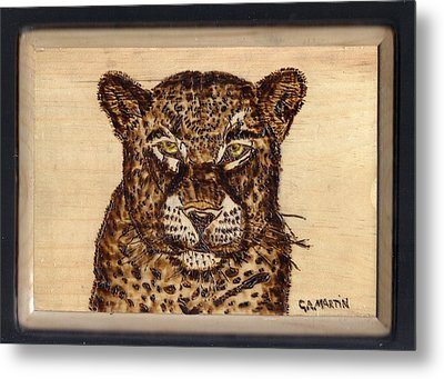 Leopard Metal Print by Clarence Butch Martin