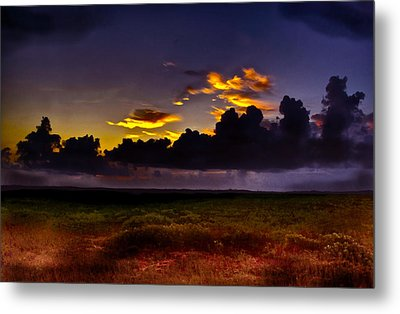 Like The First Morning Metal Print by Frank SantAgata