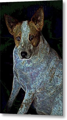 Little Blue Metal Print by One Rude Dawg Orcutt