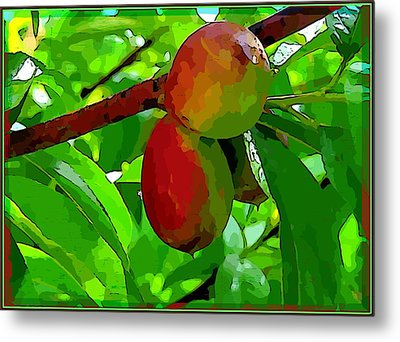 Little Peaches Metal Print by Mindy Newman