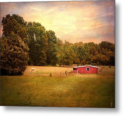 Little Red Barn Metal Print by Jai Johnson