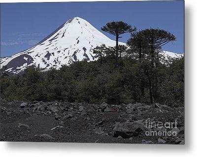 Llaima Volcano, Araucania Region, Chile Metal Print by Martin Rietze