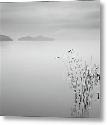 Loch Lomond Grass Metal Print by Billy Currie Photography