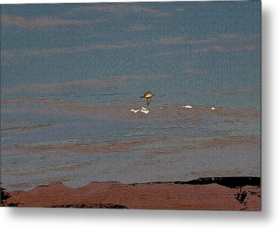 Lone Gull  Metal Print by Gilbert Artiaga