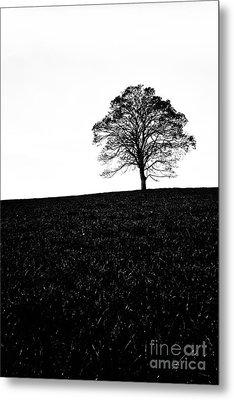 Lone Tree Black And White Silhouette Metal Print by John Farnan