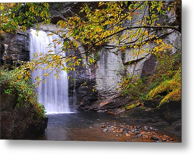 Looking Glass Falls Metal Print by Alan Lenk