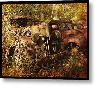 Lost In Time Metal Print by Carla Parris