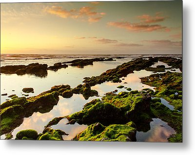 Magic Sunset Metal Print by Filomena Francisco