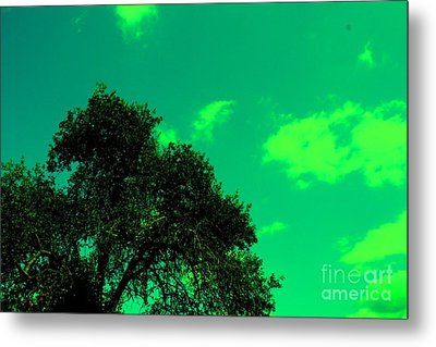 Magical Sky Metal Print by Mike Grubb