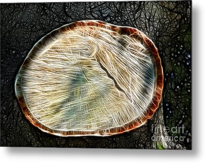 Magical Tree Stump Metal Print by Mariola Bitner