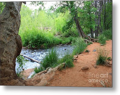 Magical Trees At Red Rock Crossing Metal Print by Carol Groenen