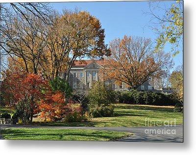 Mansion In The Woods Metal Print by Denise Ellis