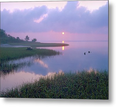 Marsh At Sunrise Over Eagle Bay St Metal Print by Tim Fitzharris