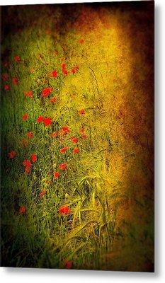 Meadow Metal Print by Svetlana Sewell