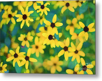Melody Of Yellow Metal Print by Darren Fisher