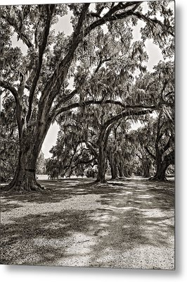 Memory Lane Monochrome Metal Print by Steve Harrington