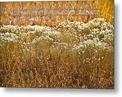 Men Are Like Grass Metal Print by Carolyn Marshall