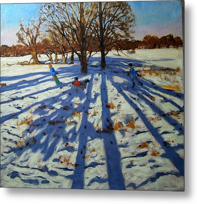 Midwinter Metal Print by Andrew Macara