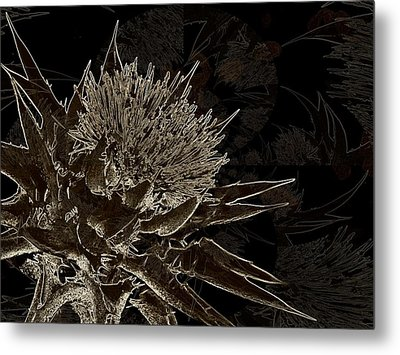 Milk Thistle In Sepia Metal Print by Shirley Sirois