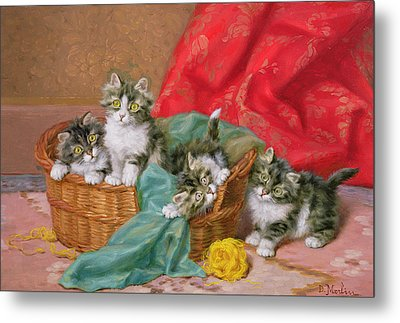 Mischievous Kittens Metal Print by Daniel Merlin