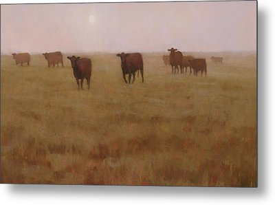 Missouri Morn Metal Print by Brian Freeman