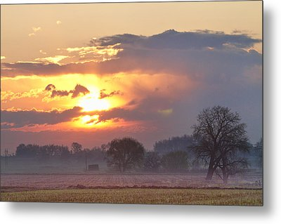 Misty Country Sunrise  Metal Print by James BO  Insogna