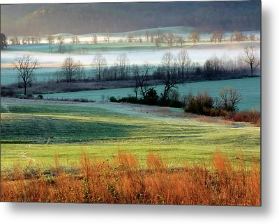 Misty Morning At Cades Cove Metal Print by Dave Mills