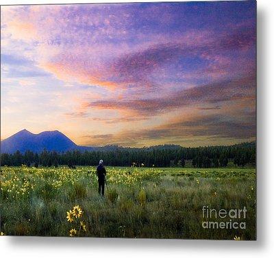 Monet Morning Metal Print by Arne Hansen